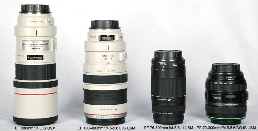 Which Of These 300mm Lenses Would You Want To Carry All Day On Your Shoulder Back Or Around Neck And How Much Lens Performance Are Willing